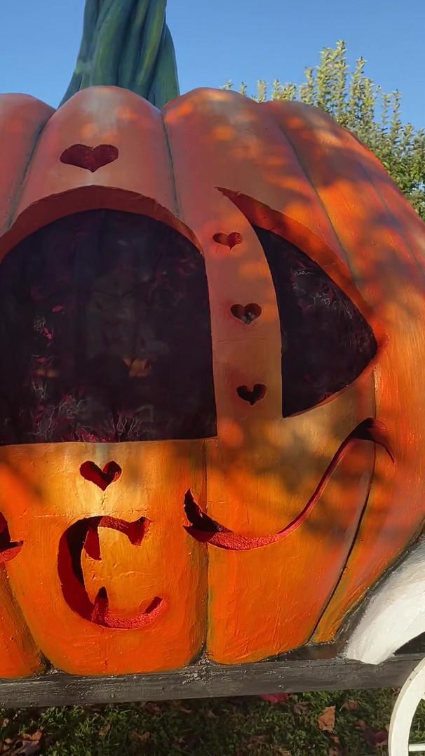 Video of Cinderella Pumpkin Coach (daytime)