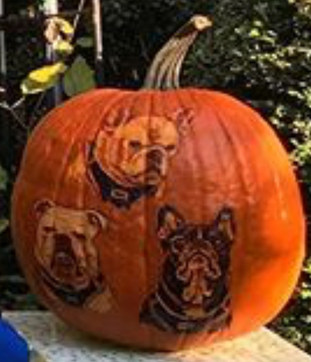 French Bulldogs - Pet Portraits - Pumpkin Carving