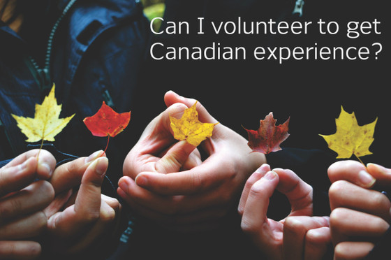 Can I volunteer to get Canadian experience?