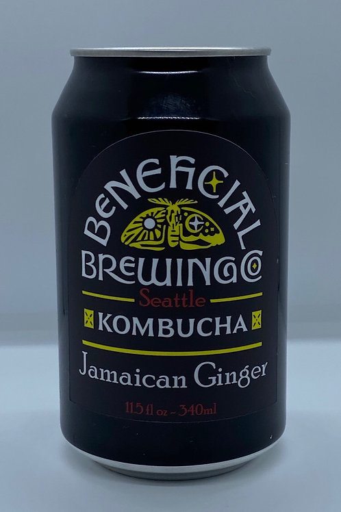 Jamaican Ginger - 12oz 6 Pack