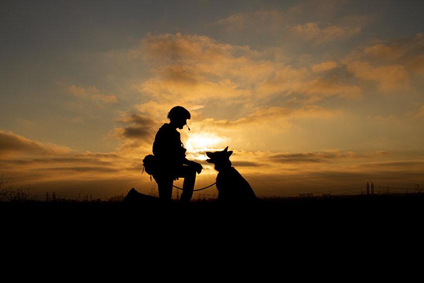 armydog2.jpg