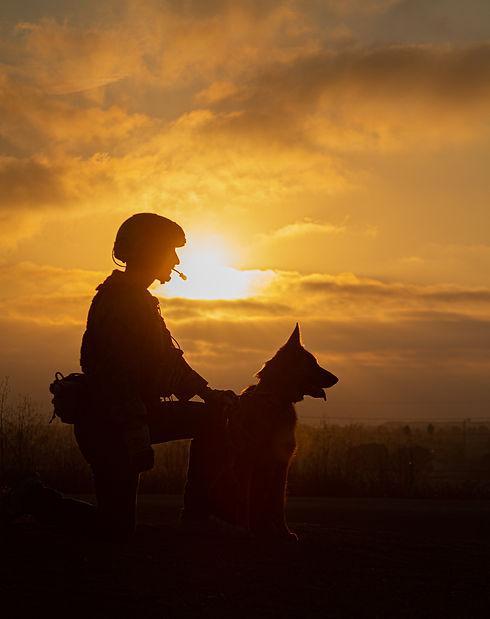 armydog3.jpg