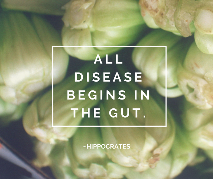 Gut Health: It's A Bigger Deal Than You Think