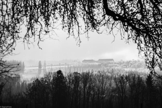 Nebel, Eis und Sonne
