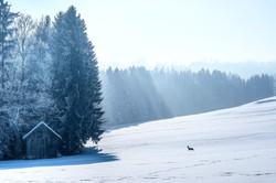 Schneelandschaft-1_tonemapped