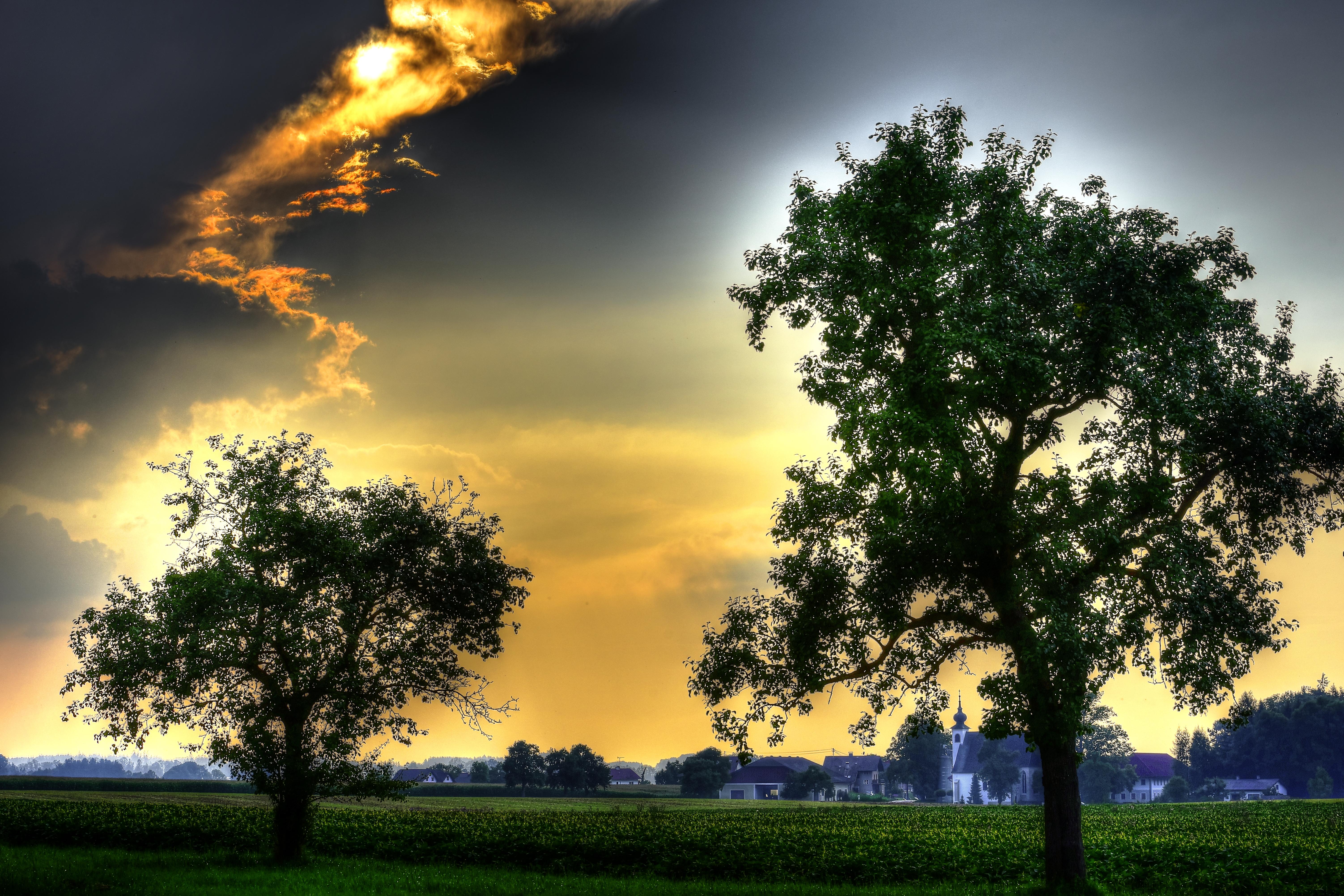 Wolken_Licht_Bäume_tonemapped