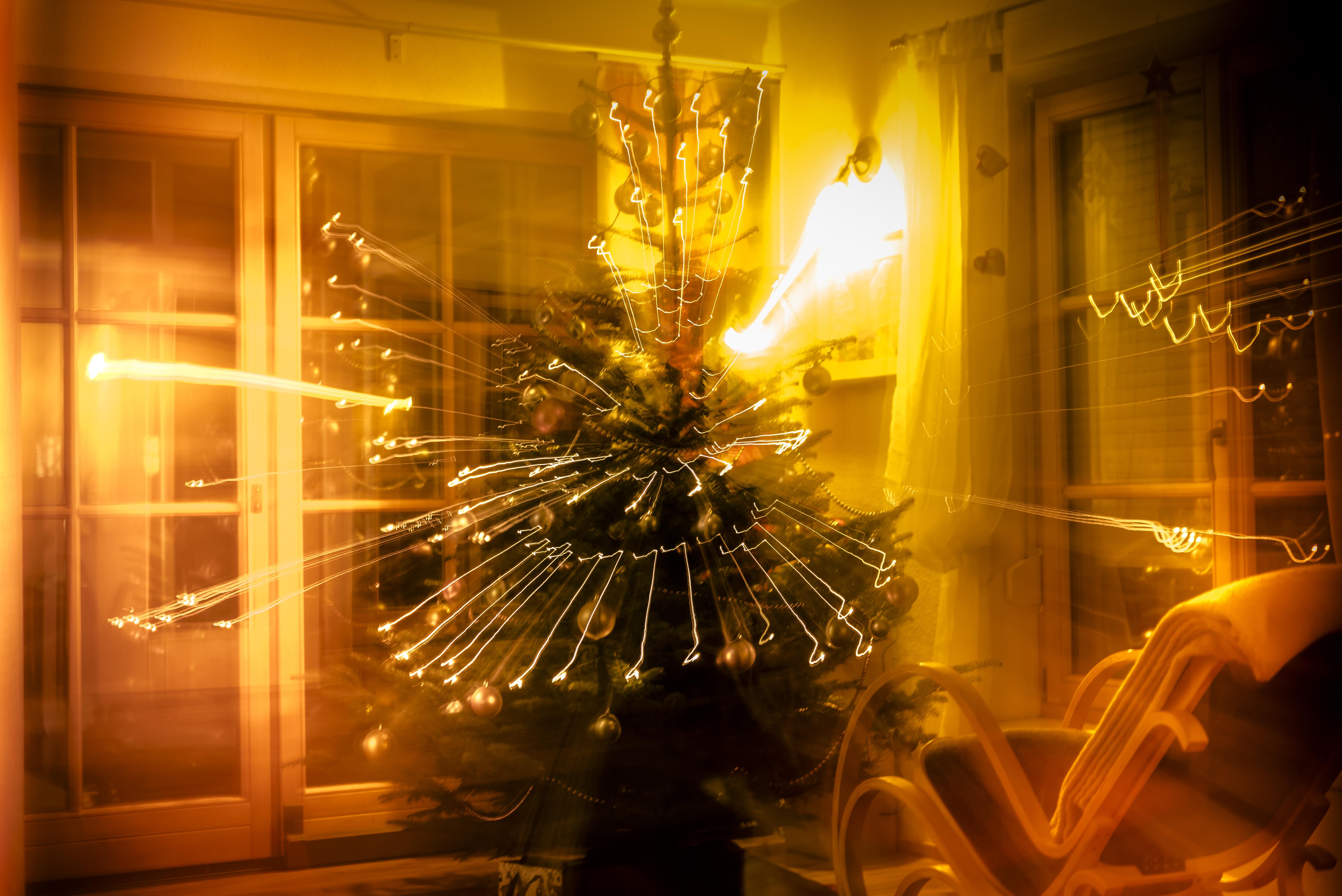Baum_Licht