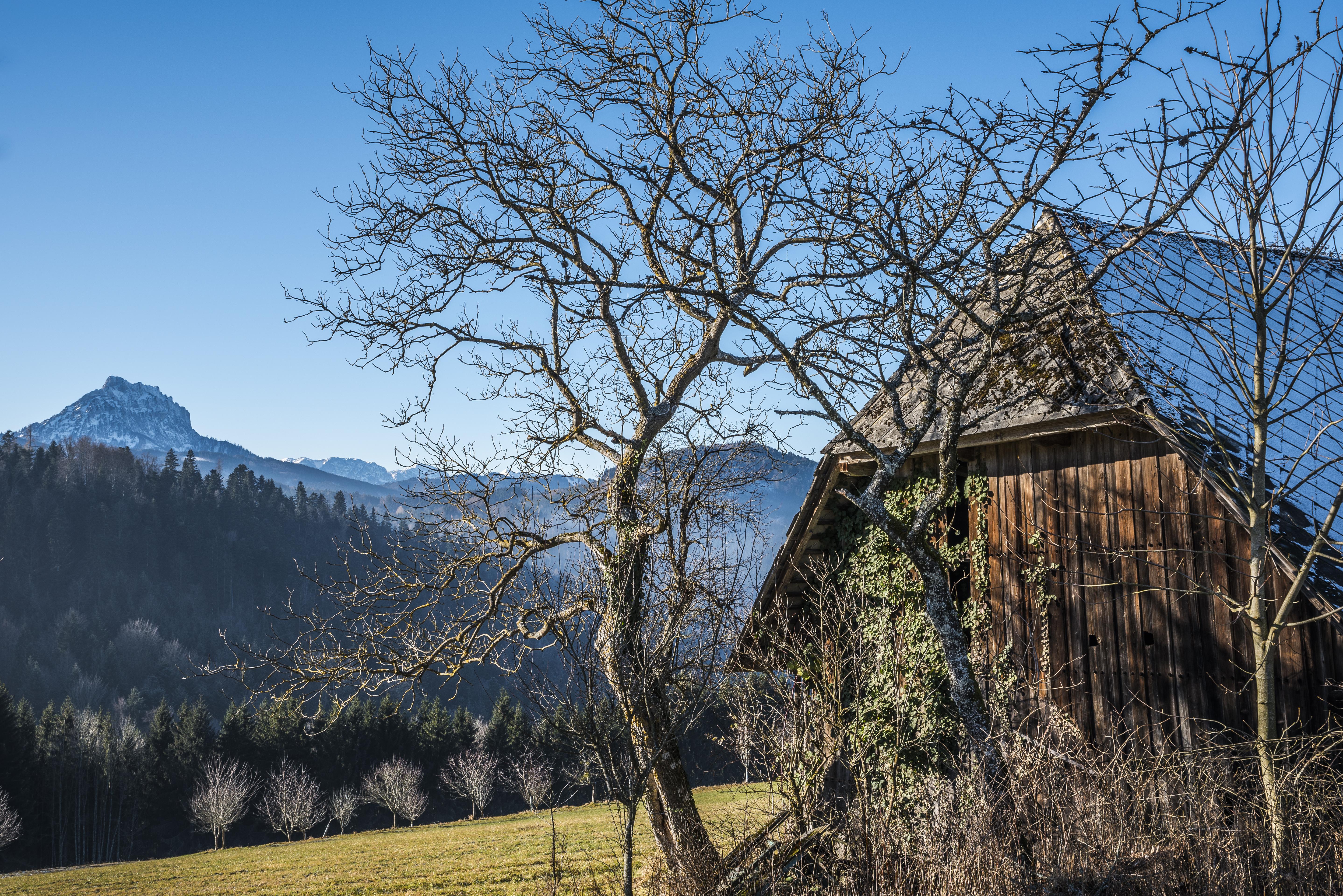 Haus_Traunstein