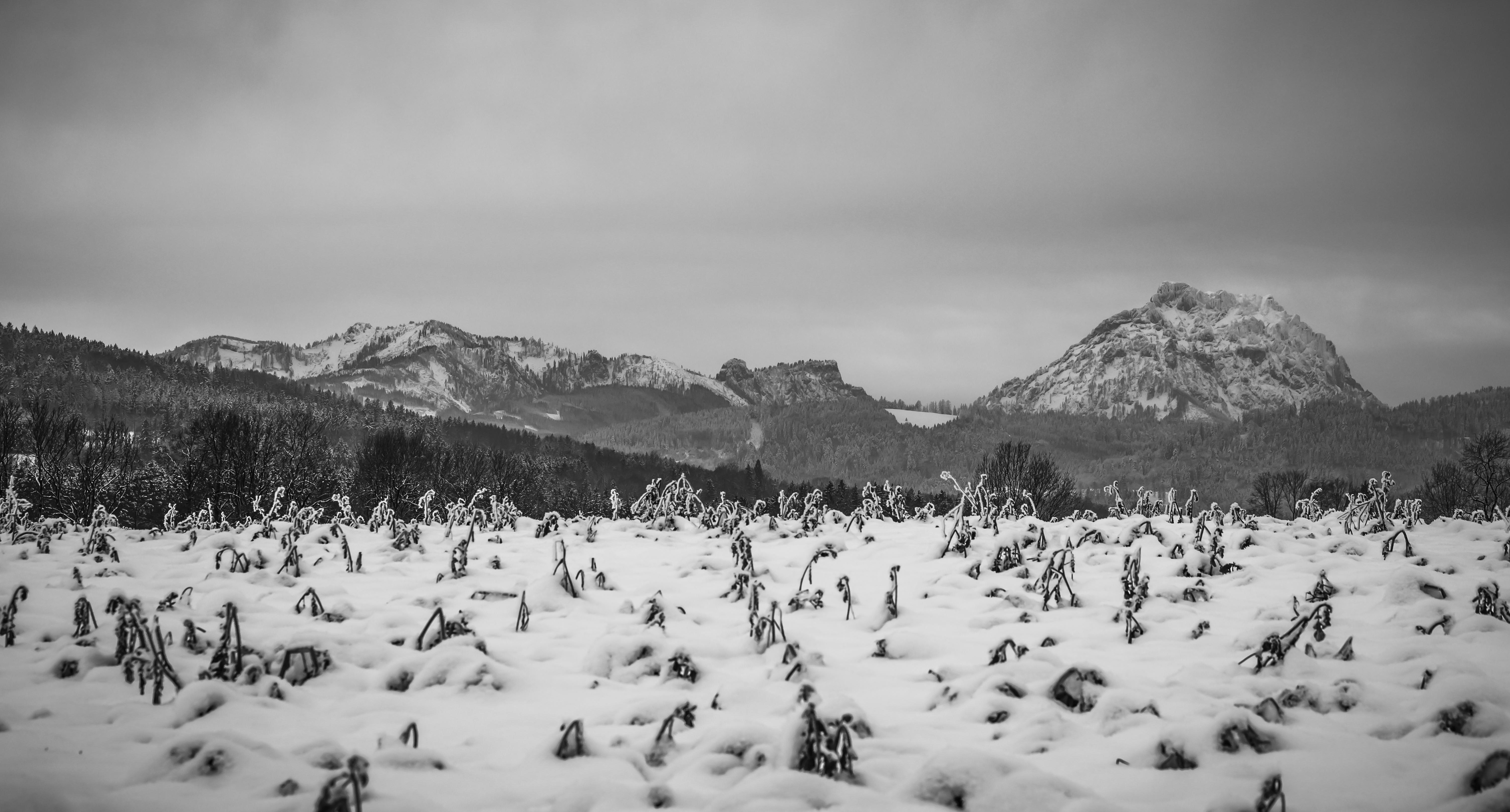 Berg_Landschaft-3