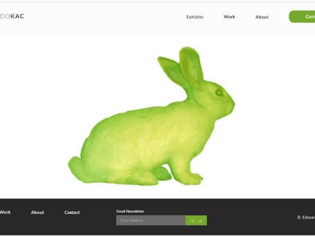 Eduardo Kac's Homepage Prototype