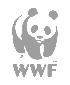 WWF_25mm_no_tab