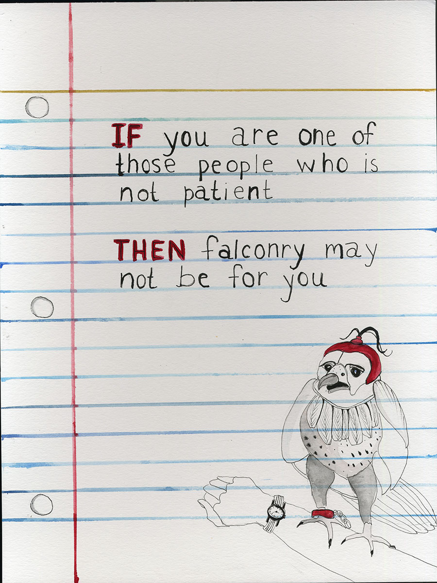 IF / THEN - Falconry