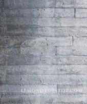 Concrete Hard Wood