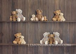 Teddy Shelves