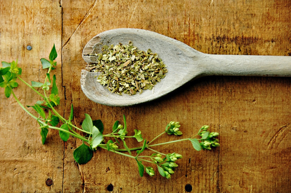 The essence of oregano