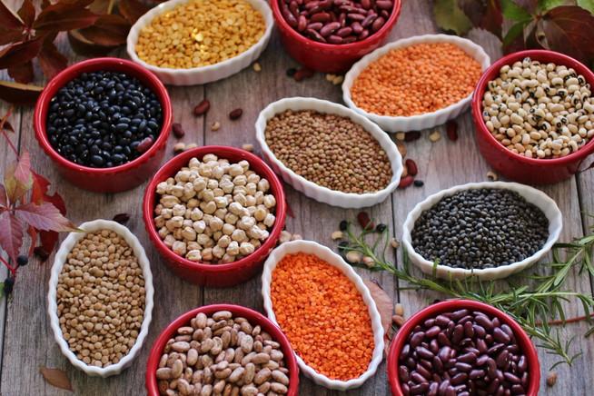The versatility of legumes