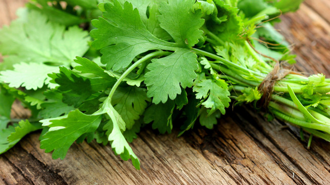 Go global with cilantro