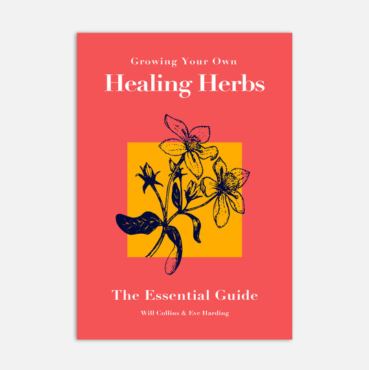 Alternative Healing Book