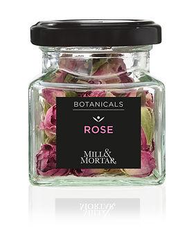 13181 Rose.jpg