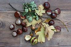 autumn-1767398_640_edited.jpg