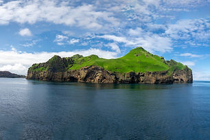 Westman Islands day tour