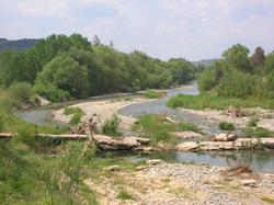 The Eurotas river