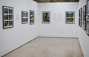 Photographic exhibition with Sebastião Salgado in Paris