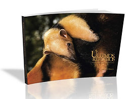 Photographic Book - State Park Paulo Cesar Vinha, Brazil