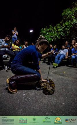 reduzida_Vitória_2018-11-20 16-47-20_Leo