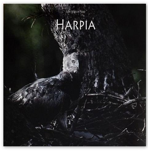 Capa-Livro-Harpia.jpg