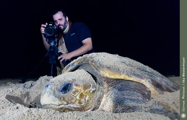 BBC Brasil repercute o resgate dramático de ninhos de tartaruga registrado pelo UR, em Linhares
