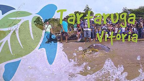 Vídeo Tartaruga Vitória