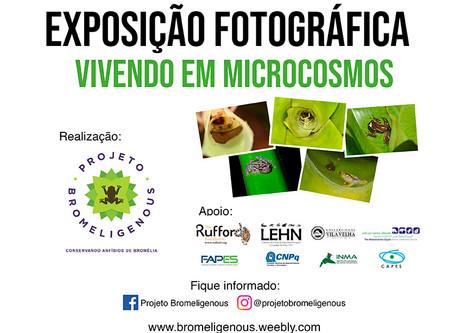 Concurso Fotográfico Bromeligenous 2019