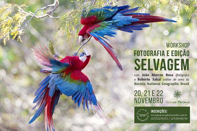Workshop Fotografia e Edição com os feras da National Geographic Brasil