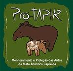 Logo Pró-Tapir