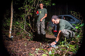 Protography project in preservation area, Brazil