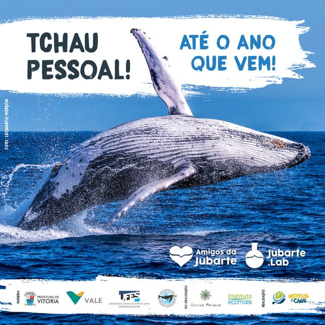Chega ao Fim a Temporada de Baleias Jubarte 2017