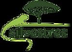 Silvestres_Logo-01_editado.png