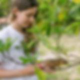 Iasmin Macedo - Projeto Marsupiais
