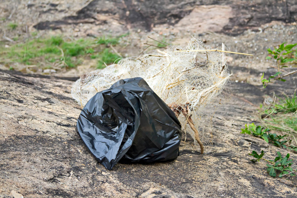 Cleanup the World Vitória