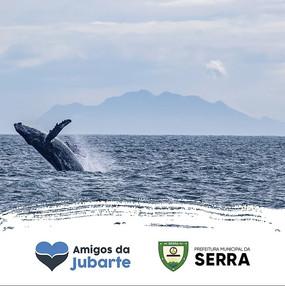 """Projeto """"Tour Amigos da Jubarte"""" como fomento do turismo de observação de baleias na Serra"""