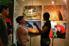 Photographic exhibitions and environmental education