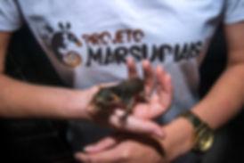 Camisa Projeto Marsupiais.jpg