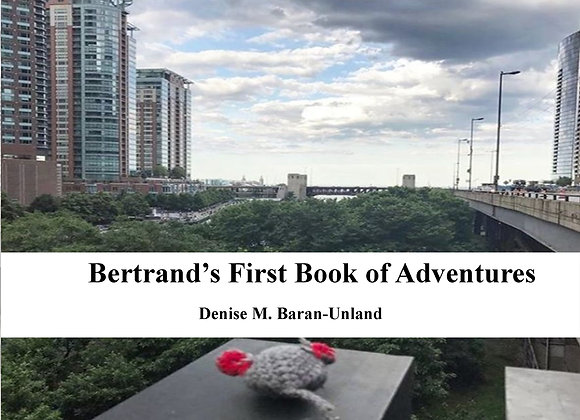 Bertrand's First Book of Adventures