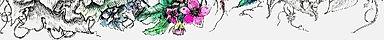 denise_sweb-pagevines_edited_edited_edit