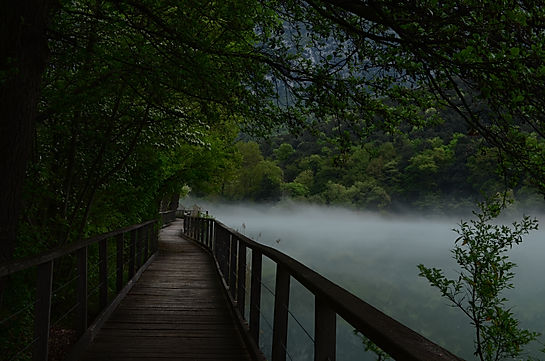 Lake Munson