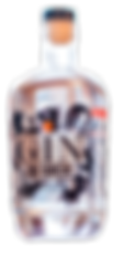 GIN_BOTTLE-1.png