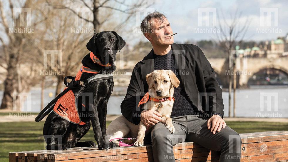 """Kalendář 2020 alternativa""""Veselý pes"""""""