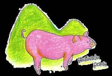北海道さん豚