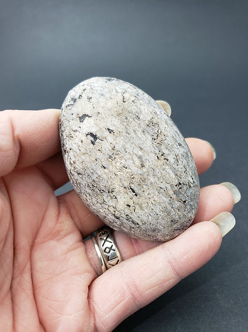 Dinosaur Bone Palm Stone
